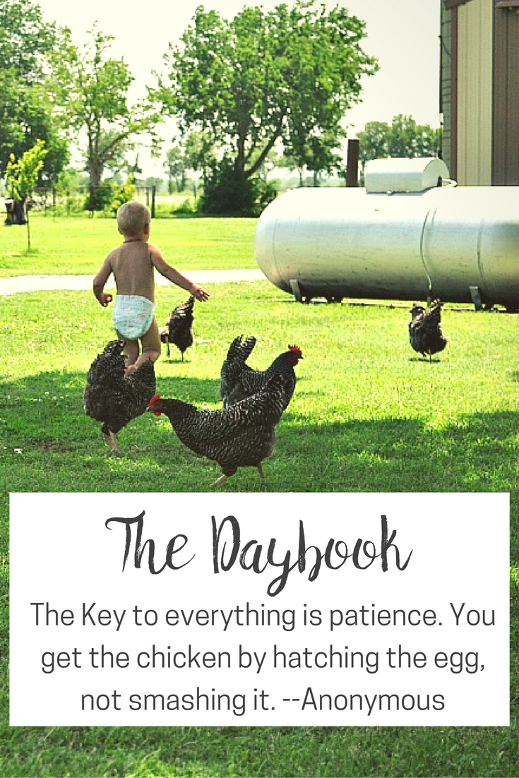 The Daybook at The Littlest Way
