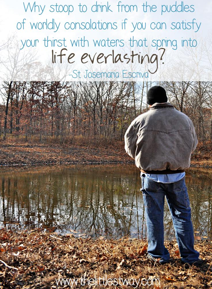 inspiring bible quotes john 4 15 the littlest way