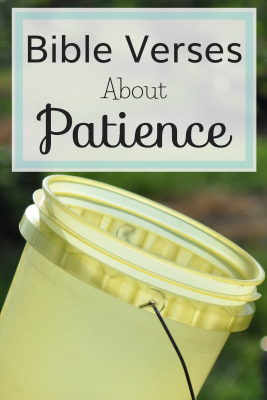 Bible verses about patience can give us the wisdom and counsel needed to strengthen the virtue of patience within us.