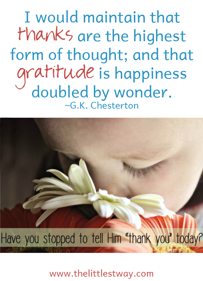 My Daily Gratitude Affirmations 2 The Littlest Way