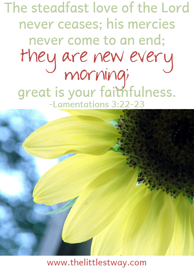 Daily Affirmations--God's mercies are new every morning.