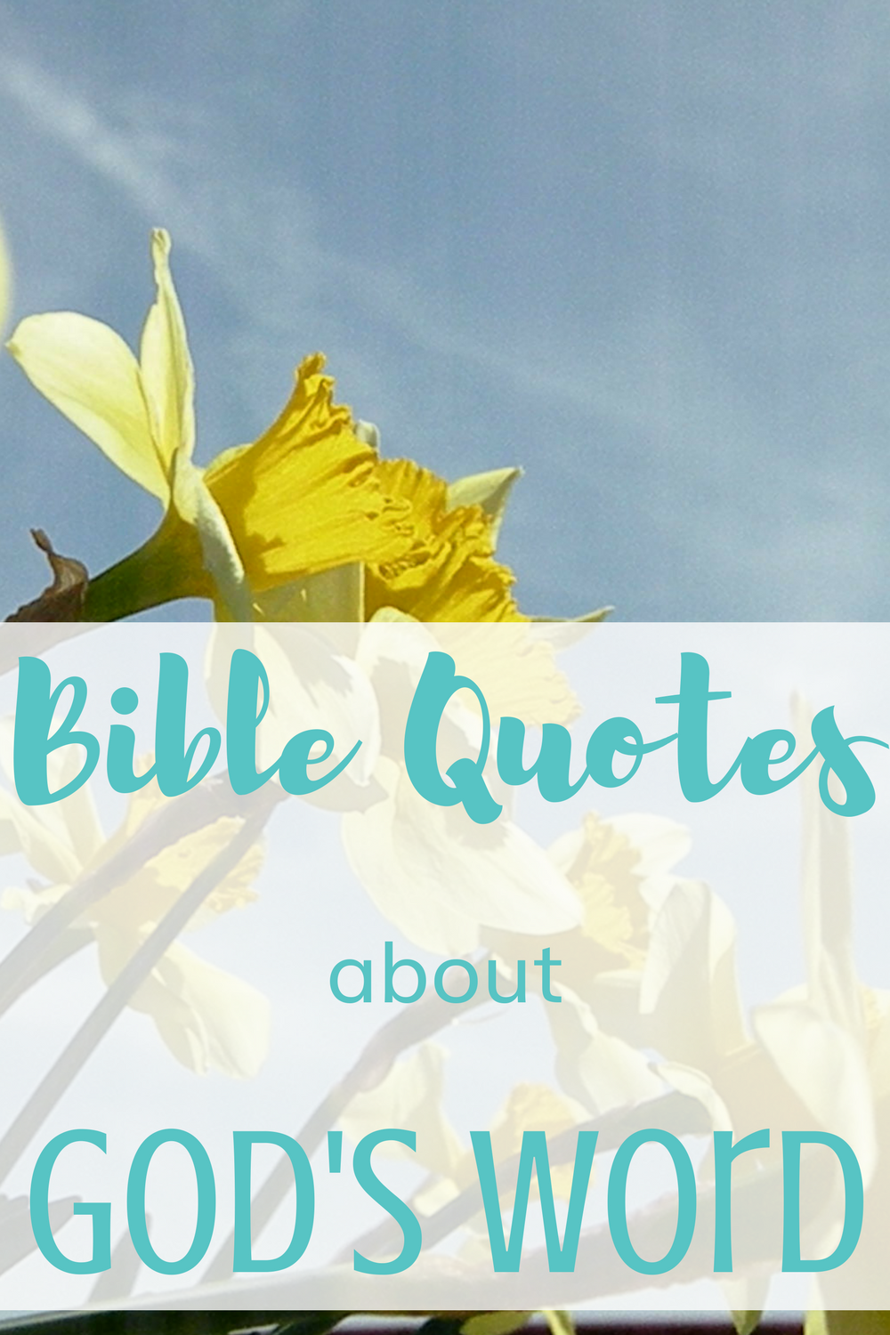 Bible quotes about God's Word for Christians