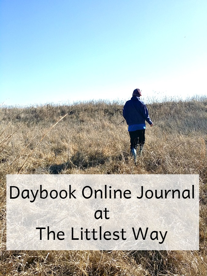 Daybook Online Journal