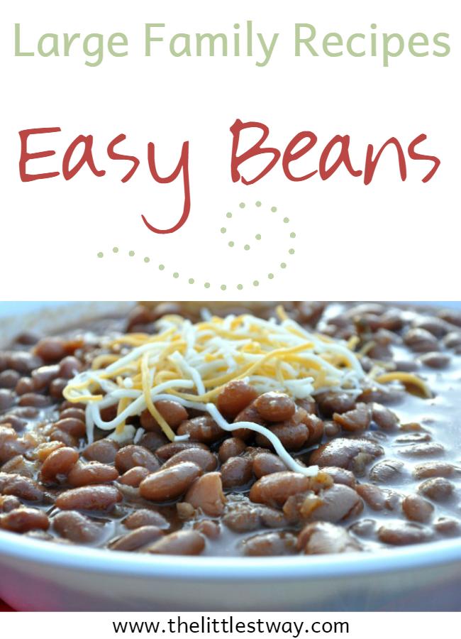 Large Family Recipes