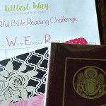 Bible Journaling: Bible, Journal and Pens Giveaway