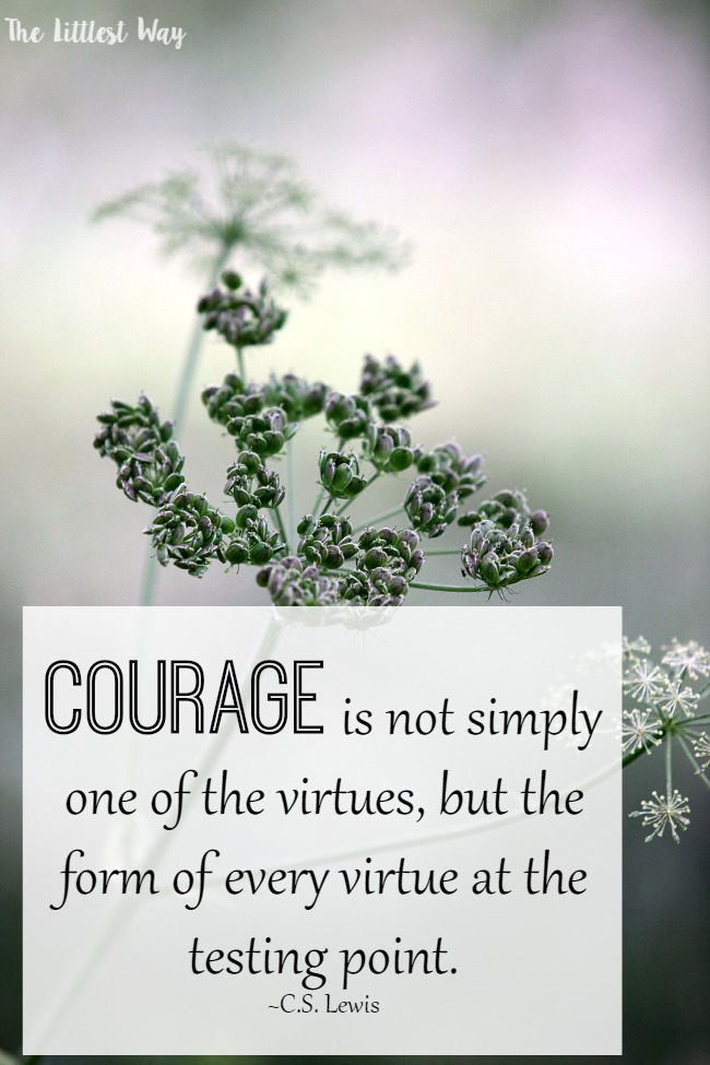 Bible Quotes About Courage The Littlest Way