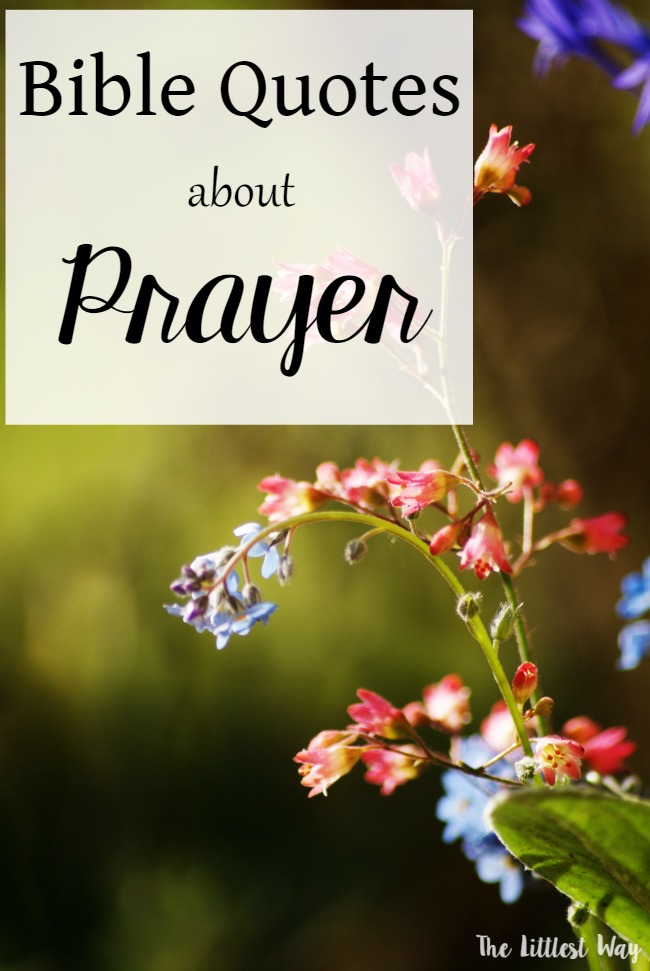 Bible Quotes: Prayer in the Bible • The Littlest Way