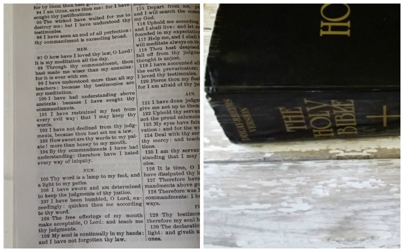 Which Catholic Bible Should I Use? • The Littlest Way
