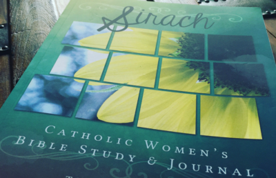 Show Me Your Sirach Bible Study and Journal