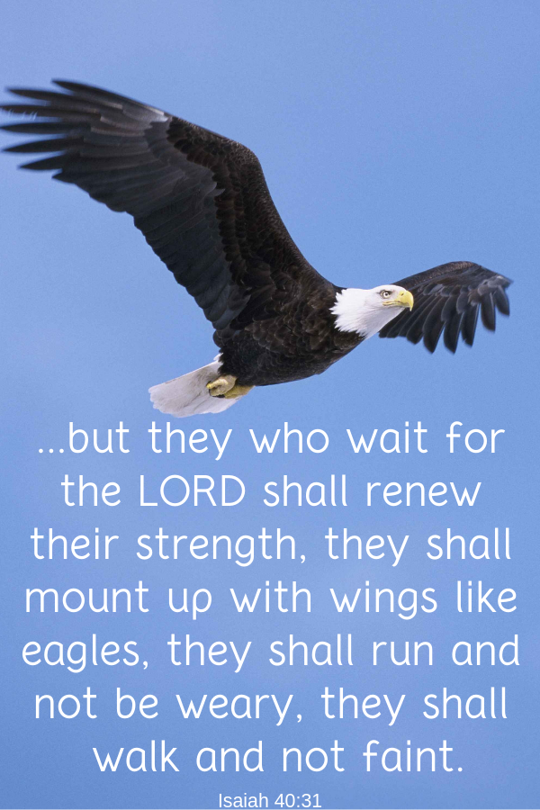 Bible Verse on Patience