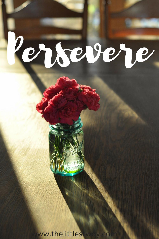 Bible Journaling: Persevere