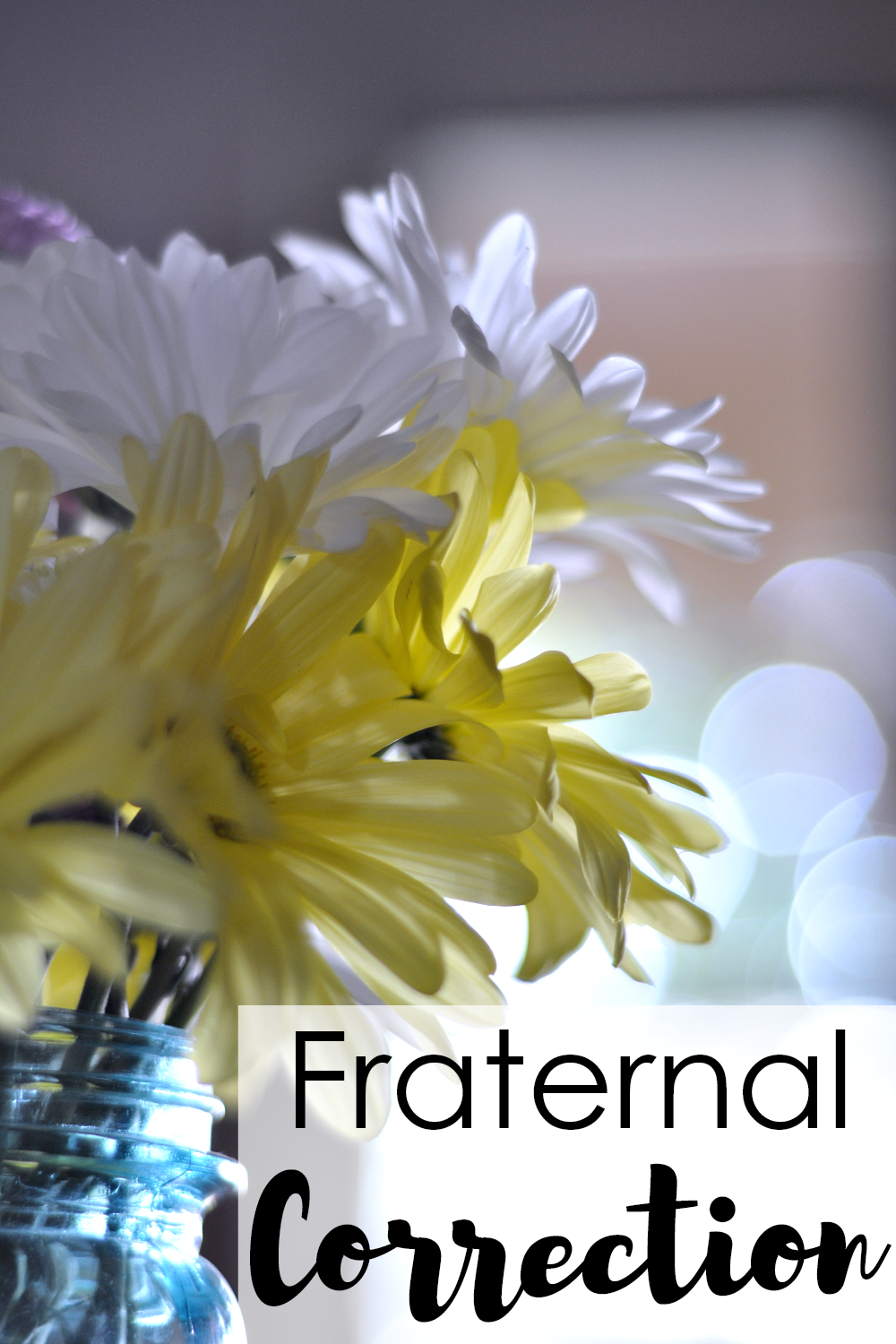 The Littlest Way Fraternal Charity