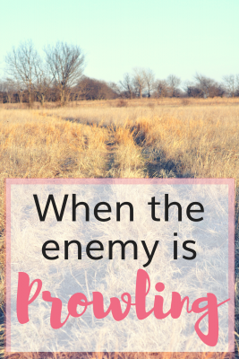 6 Things to Do When the Enemy is Prowling About