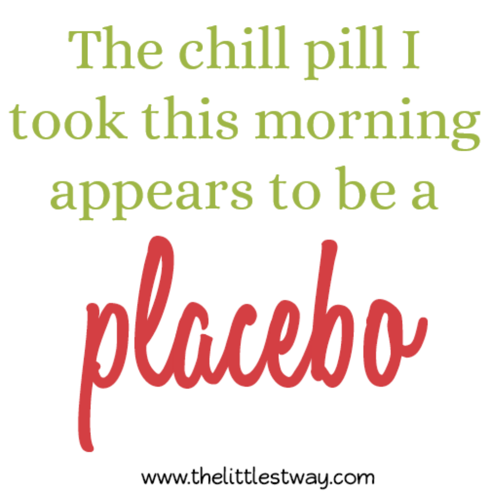 Daybook Chill Pill Placebo