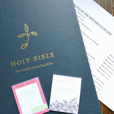 The  New (and Only) Catholic Journaling Bible