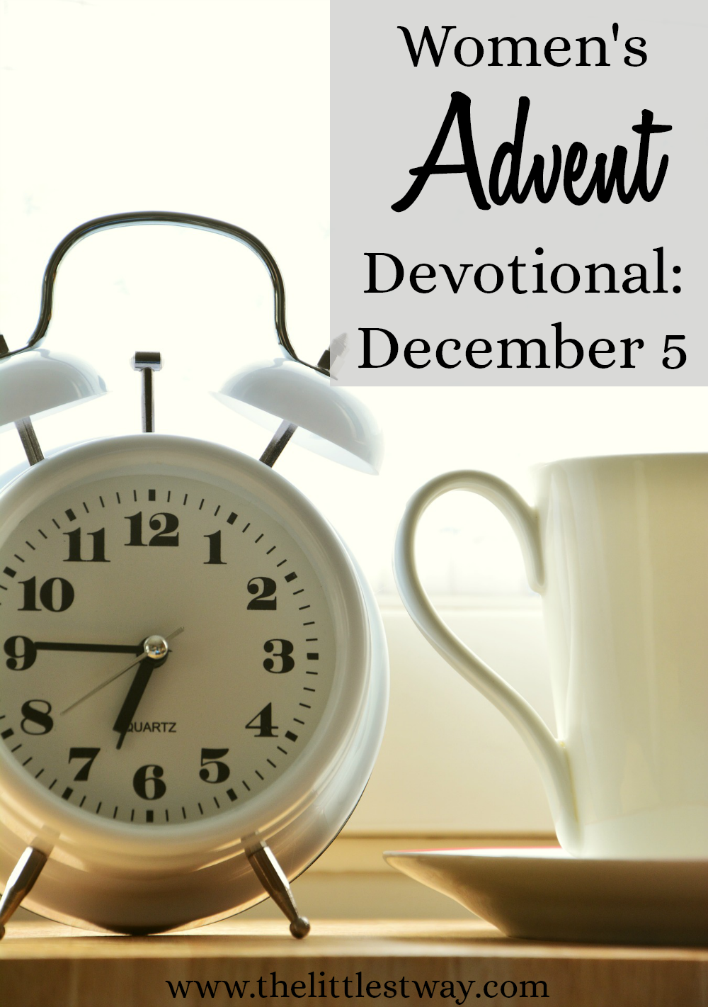 A Women's Advent Devotional that is simple, short, and to the point...but spiritually rich and soul-satisfying deep.