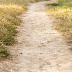 Lent Devotional for Women: The Spirit of Lent