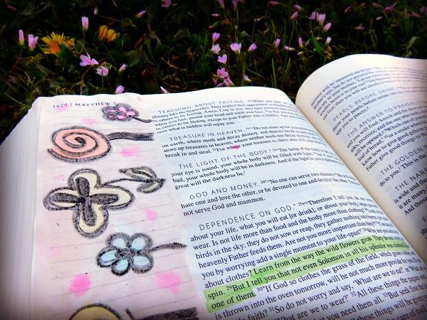 Catholic Journaling Bible • The Littlest Way