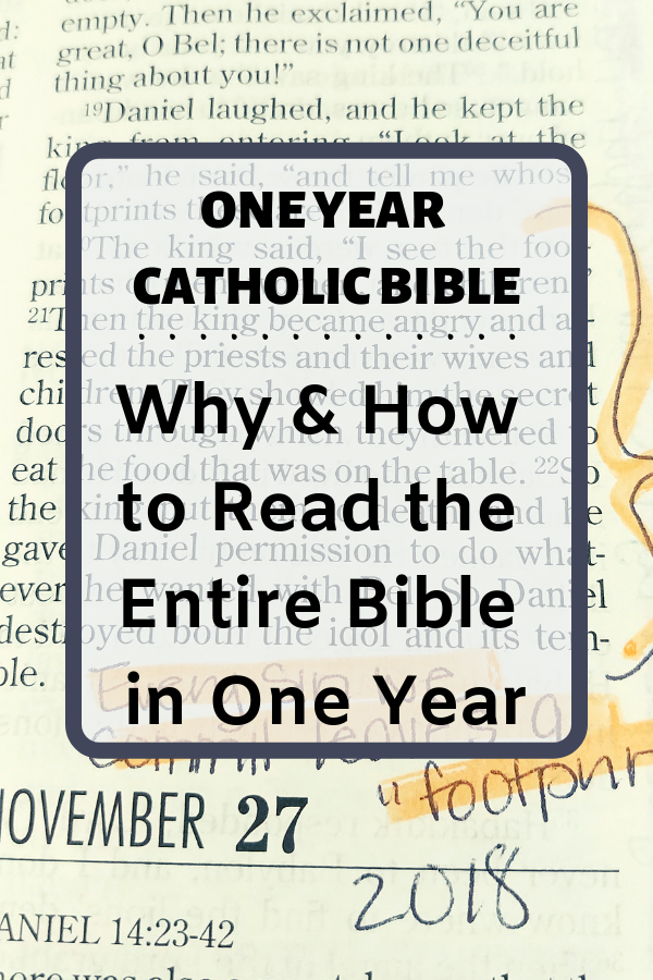 One Year Catholic Bible • The Littlest Way